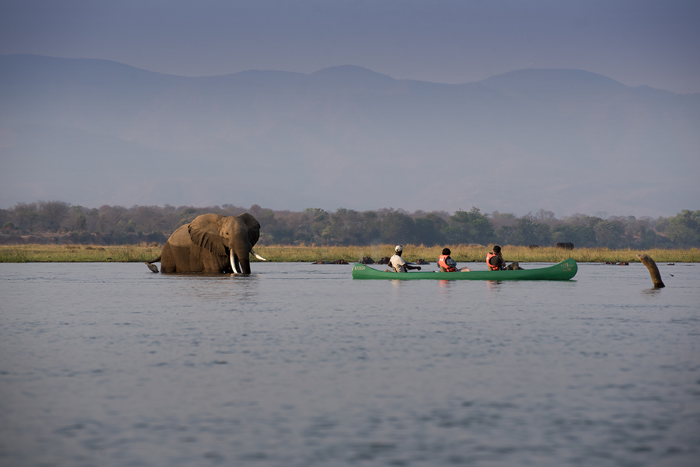CanoeEli